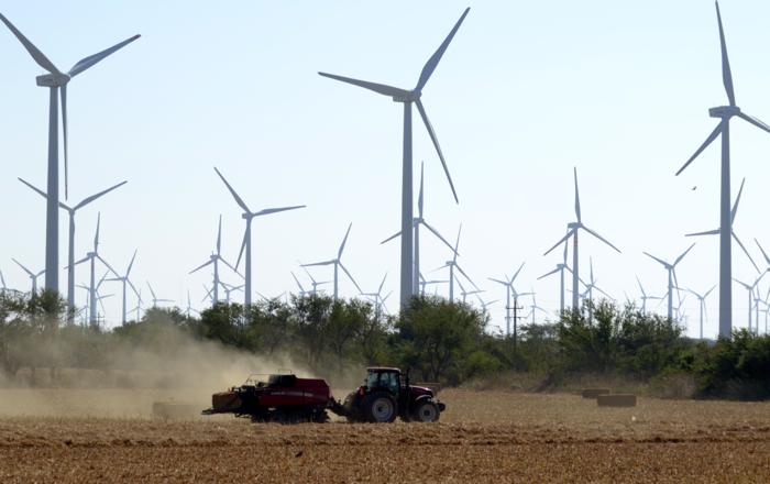 Gavin's Mexican windmills