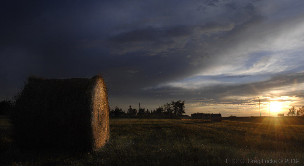 Hay bales in the Peace Country