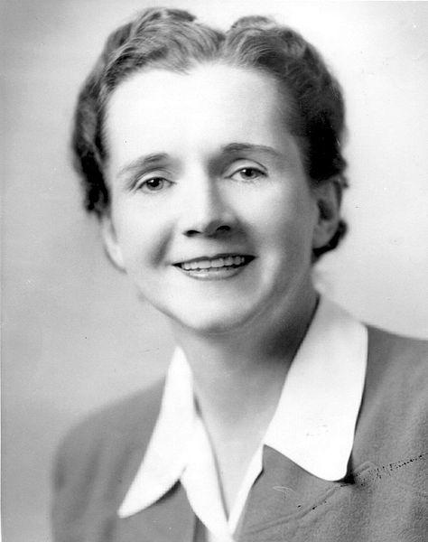 Rachel-Carson profile