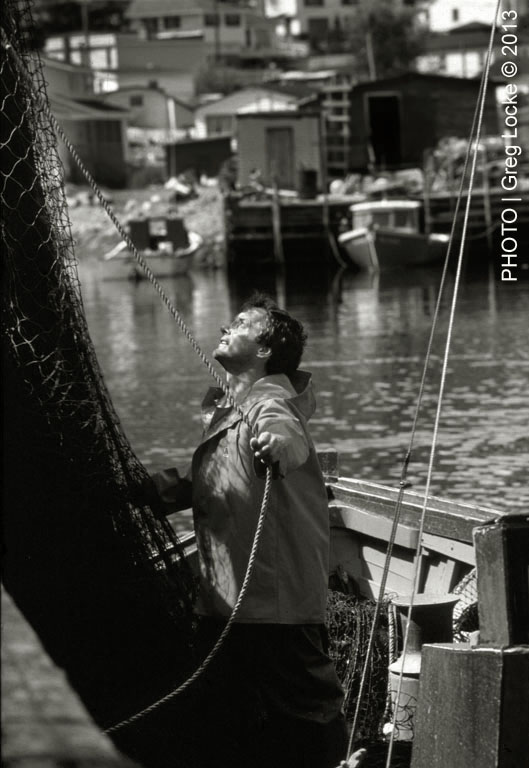 Fisherman, Reg Best, unloads nets in the village of Petty Harbour, Newfoundland.© Greg Locke 1992.