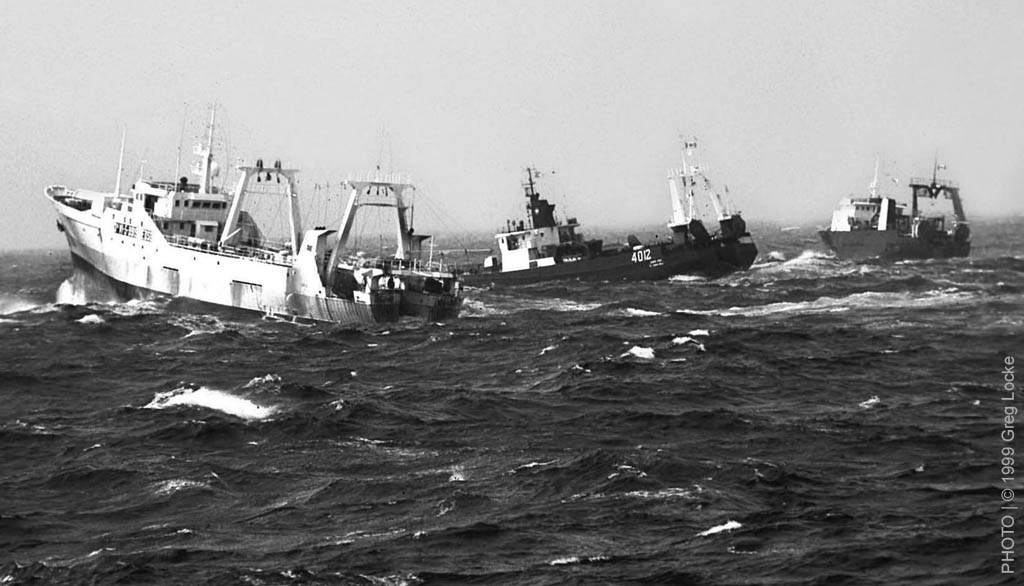 Spanish and Canadian offshore fishing trawlers at the Canadian 200mile limit on the Grand Banks of Newfoundland. © Greg Locke 2000