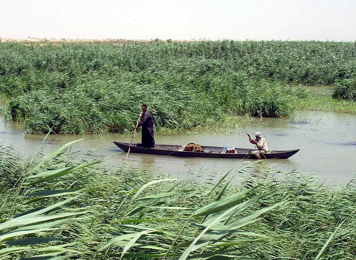1200px-Marsh_Arabs_in_a_mashoof