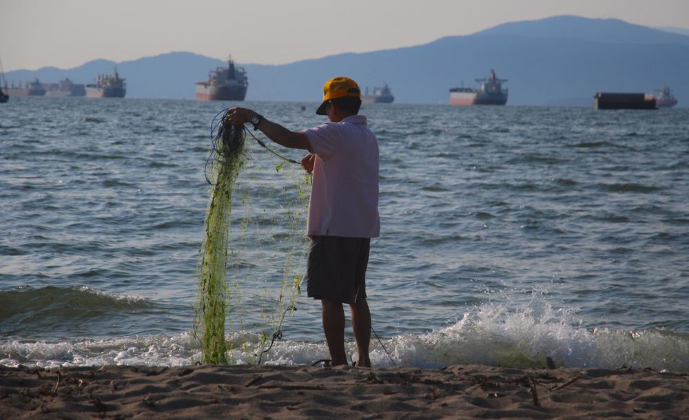 VANCOUVER, Canada -- A fisher throws his net at Kitsilano Beach, sandwiched between oil tankers and recreational beach users of the popular urban park. © Deborah Jones 2014