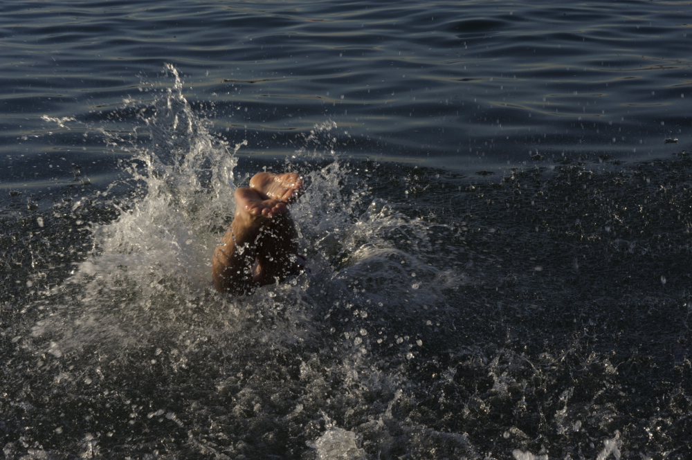 A participant in the Polar Bear swim in Vancouver dives into the New Year. F&O file photo © Bead Shop Media 2014