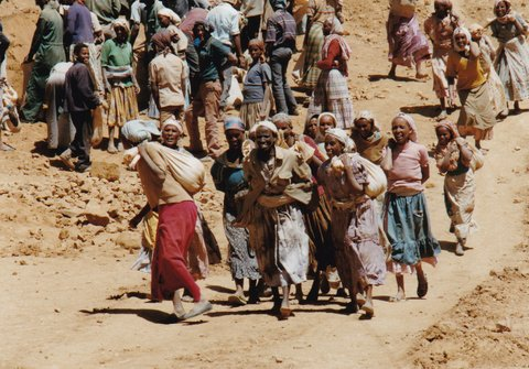 As independence approached in 1993 Eritreans, like these women carrying rocks to build a dam, were happy to volunteer for reconstruction work. Now they are drafted into unending years of servitude. Photo by Jonathan Manthorpe, © 1993