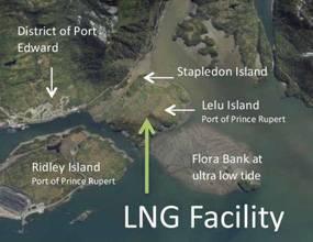 Petronas image of potential LNG site on Lelu Island. Petronas via B.C. government