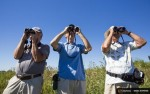 "Bird watchers (L-R) Tom Mason, Bob Johnson, and Graham Crawshaw watch birds at Tommy Thompson Park located on a man-made peninsula known as the Leslie Street Spit, in Toronto August 9, 2015. It was created over 60 years ago by the dumping of dredged sand, concrete chunks and earth fill, expanding what was once just a thin strip of land in the city's busy harbor. An unexpected urban oasis, the development brings marshes, lagoons and forests to the centre of Canada's largest city. REUTERS/Mark BlinchPICTURE 13 OF 29 FOR WIDER IMAGE STORY ""EARTHPRINTS: LESLIE STREET SPIT""SEARCH ""LESLIE SPIT"" FOR ALL IMAGES"