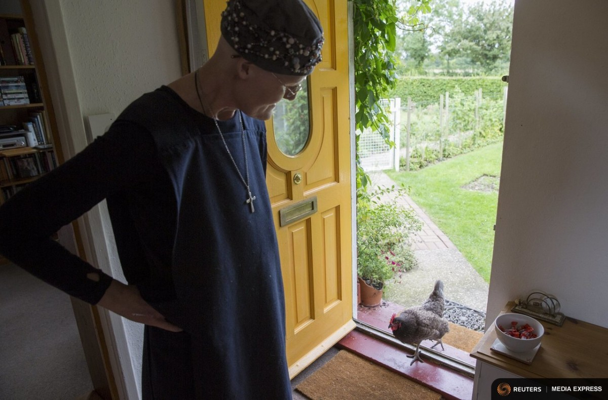 "Sister Rachel Denton coaxes a chicken into St Cuthbert's Hermitage in Lincolnshire, north east Britain August 24, 2015. Denton, a Catholic hermit, rises early to tend to her vegetable garden, feed her cats and pray. But the former Carmelite nun, who in 2006 pledged to live the rest of her life in solitude, has another chore - to update her Twitter account and check Facebook. ""The myth you often face as a hermit is that you should have a beard and live in a cave. None of which is me,"" says the ex-teacher. For the modern-day hermit, she says social media is vital: ""tweets are rare, but precious,"" she writes on her Twitter profile. The internet also allows Denton to shop online and communicate with friends. ""I am a hermit but I am also human."" A diagnosis of cancer earlier this year reaffirmed Denton's wish to carry on a life of solitude, prayer and contemplation. REUTERS/Neil HallPICTURE 4 OF 23 FOR WIDER IMAGE STORY: ""OUT OF THE CAVE AND ONTO FACEBOOK - LIFE OF A MODERN HERMIT""SEARCH ""RACHEL DENTON"" FOR ALL IMAGES"