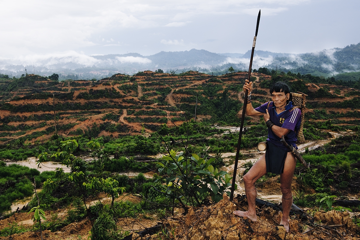 Tebaran Agut, a hunter in Borneo, fears a difficult future for indigenous people as logging operations destroy the rainforest. Deforestation also impacts biodiversity and global climate. Photo copyright xxx 2015