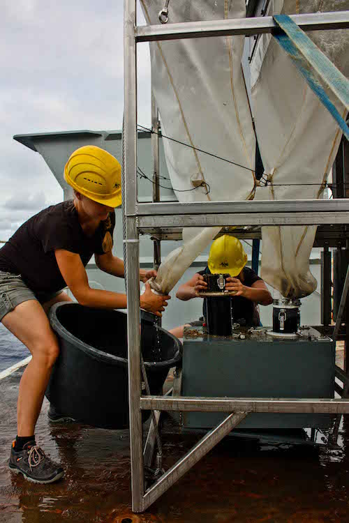 Deep sea sample recovery from the Brenke epibenthic sledge during cruise AB02 credit Inga Mohrbeck, ABYSSLINE cruise Marc.jpg