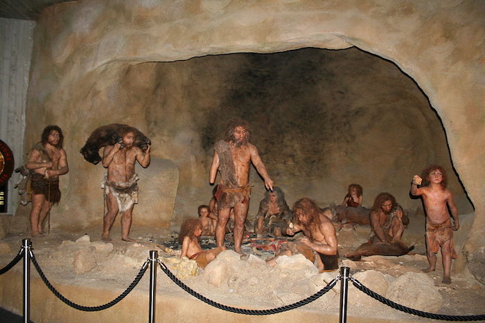 Interior of Krapina Neanderthal Museum in Krapina, Croatia. Photo credit: Tromber, Wikipedia