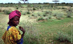 Africa5.jpg