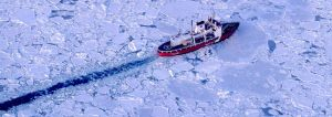 c58-Icebergs-8.jpg